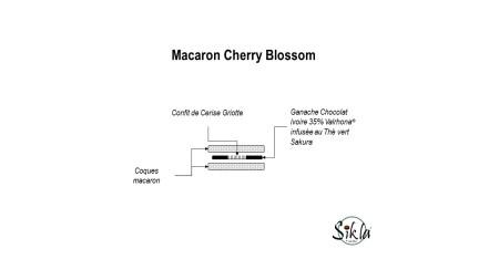 Macaron Cherry Blossom